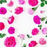 Blom- ram av rosa rosor och sidor på vit bakgrund Lekmanna- lägenhet, bästa sikt Blom- livsstilsammansättning Royaltyfria Bilder