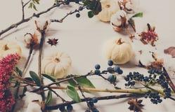 Blom- ram av torkade blommor på vitt trä, bästa sikt Arkivfoto