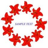 Blom- ram för tappning med liljor Arkivbild