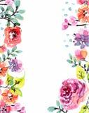 Blom- ram för vattenfärg Arkivbild