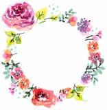 Blom- ram för vattenfärg Arkivfoton