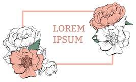 Blom- ram med pionen stock illustrationer