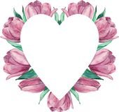 Blom- ram som göras av rosa tulpan Se mina andra arbeten i portfölj vektor illustrationer