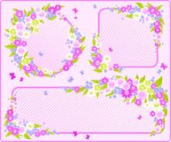 blom- ramar Royaltyfri Bild