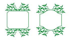 Blom- ramuppsättning - illustration Royaltyfri Bild