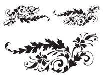 blom- renässansvektor för 3 detalj royaltyfria foton