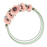 Blom- rund ram för rosa vallmo, vektor Arkivbilder