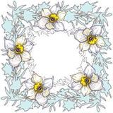Blom- rund ram för vår med utdragna blommapåskliljor för hand fotografering för bildbyråer