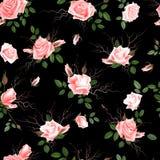 Blom- sömlös bakgrund för tappning med blommande rosa rosor, vektorillustration stock illustrationer