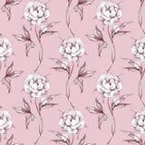 Blom- sömlös modell för rosa vattenfärg Fotografering för Bildbyråer