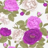 Blom- sömlös modell för vektor med vit, lilor och violetrosor royaltyfri illustrationer