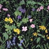 Blom- sömlös modell med romantiker som blomstrar lösa blommor och äng som blommar örtartade växter på svart bakgrund stock illustrationer