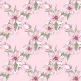Blom- sömlös modell med rosa blommor Fotografering för Bildbyråer