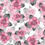 Blom- sömlös modell med rosa blommor Arkivfoto
