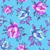 Blom- sömlös modell med rosa och blåa pioner för blomning, på blå bakgrund vektor illustrationer