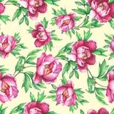 Blom- sömlös modell med rosa pioner för blomning, på gul bakgrund vektor illustrationer