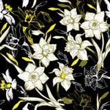 Blom- sömlös modell med utdragna blommapåskliljor för hand, pingstlilja arkivfoto