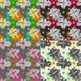 Blom- sömlös textur i olika färger Arkivbilder