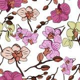 Blom- sömlös vektormodell med orkidén royaltyfri illustrationer