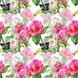 Blom- sömlöst för tappning på vit bakgrund med rosor, fjärilen och lösa blommor, vektorvattenfärgillustration Arkivbild