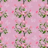Blom- sömlöst i rosa färger färgar, gör sammandrag modellen av dekorativa blommor Arkivbilder