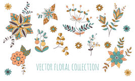 Blom- samling för vektor Arkivfoton