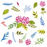Blom- samling med sidor och blommor Royaltyfri Illustrationer