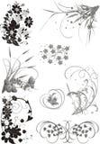 blom- samlingselement Fotografering för Bildbyråer