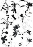 blom- samlingselement Royaltyfri Bild