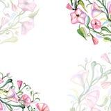 Blom- sammansättning för vattenfärg Arkivbilder