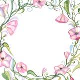 Blom- sammansättning för vattenfärg Royaltyfria Foton