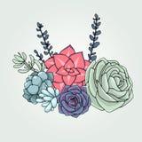 Blom- sammansättning för vektorsuckulenter Suckulent prydnad Natur vektor illustrationer