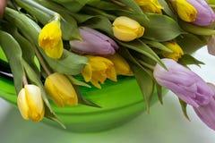 Blom- sammansättning i grön glass bunke Arkivbilder