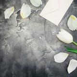 Blom- sammansättning med vita tulpan och pappers- kuvert med kortet på mörk bakgrund Lekmanna- lägenhet, bästa sikt Blom- modellb Arkivbild
