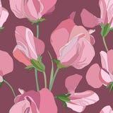 Blom- seamless bakgrund från lila blommor Royaltyfri Fotografi