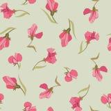 Blom- seamless bakgrund från rosa blommor Arkivbilder