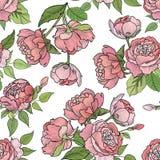 blom- seamless för bakgrund bukettbows figure seamless litet för blommamodell Royaltyfria Foton