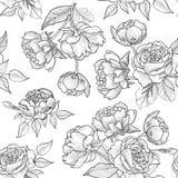 blom- seamless för bakgrund bukettbows figure seamless litet för blommamodell Krusidulltextur Royaltyfri Foto