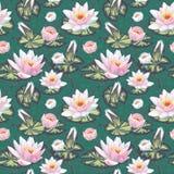 Blom- seamless mönstrar med näckros Royaltyfri Bild