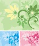 blom- serie för bakgrund Arkivbilder