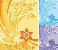 blom- serie för bakgrund Arkivfoto