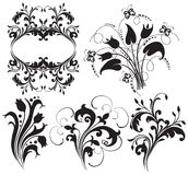 Blom- silhouette 库存图片