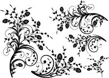 Blom- silhouette 库存照片