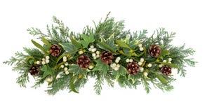 Blom- skärm för jul arkivfoto