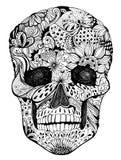 Blom- skalle Arkivfoton
