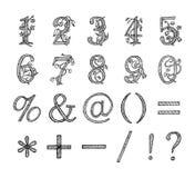 Blom- skissad nummerhand som dras Arkivbilder