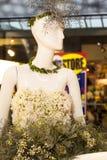 Blom- skyltdockaserie Fotografering för Bildbyråer