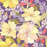 Blom- sömlös bakgrund. försiktig blommamodell. vårtextur. Royaltyfria Foton