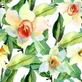 Blom- sömlös modell Royaltyfria Bilder