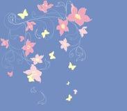 blom- soft för bakgrund Arkivfoto